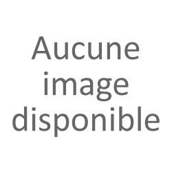 JDM origine - lunette arrière couleur grise